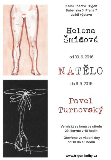 Smidova a Turnovsky vystava